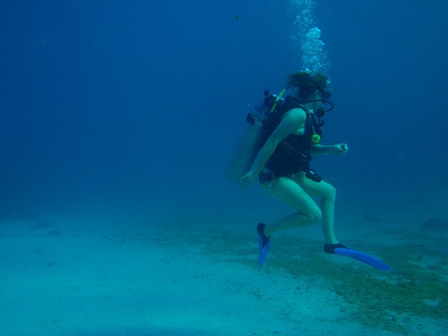 how my sister got her dream job as a scuba instructor the billfold