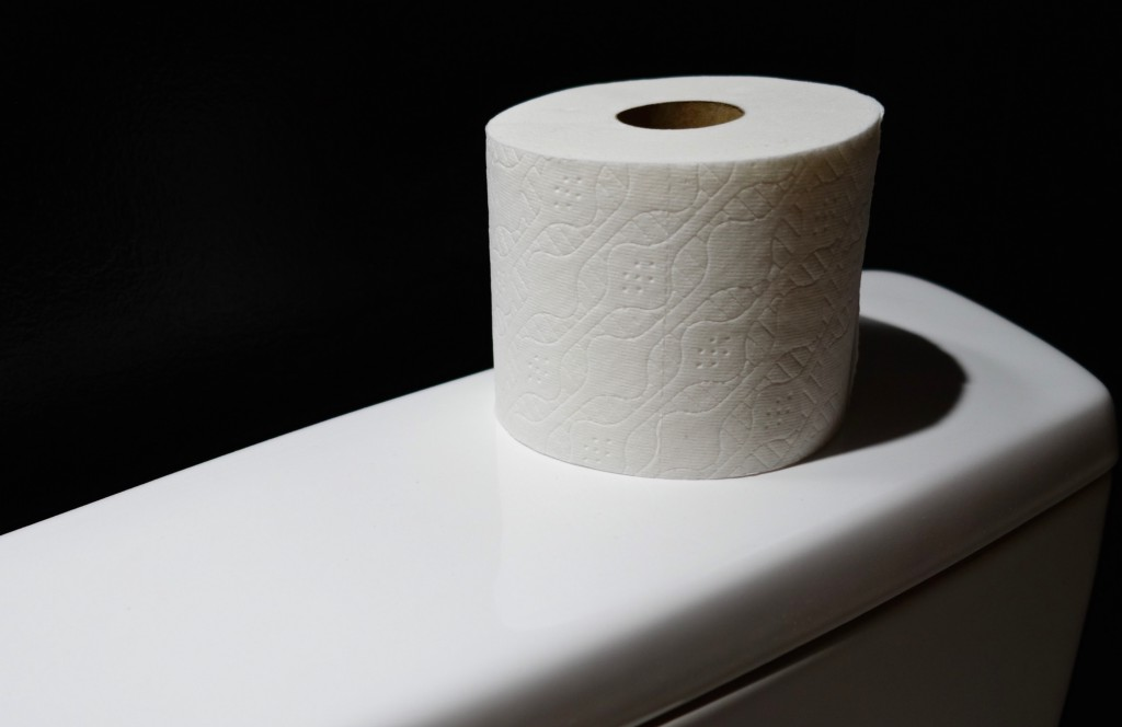 In Defense of Cheap Toilet Paper - The Billfold